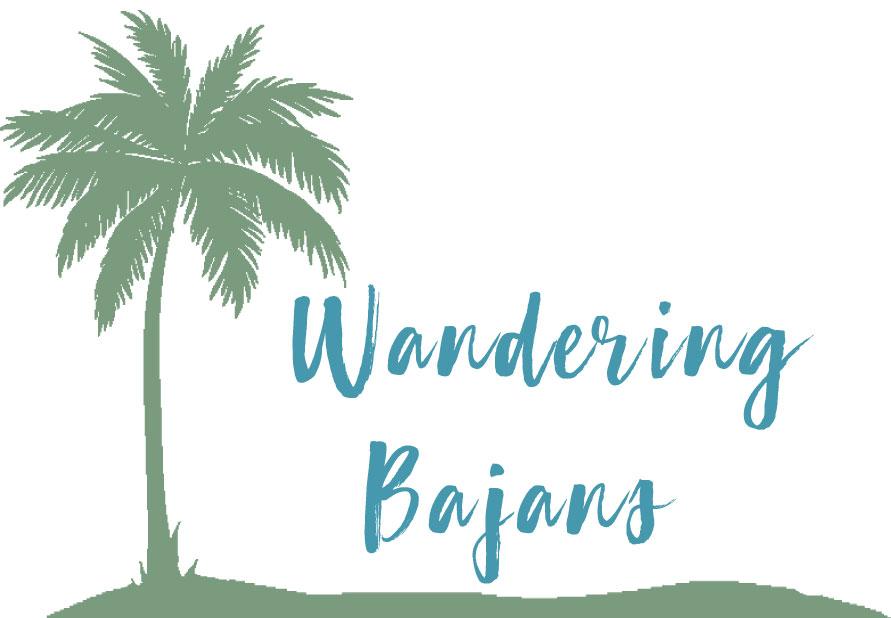 Wandering Bajans Shop